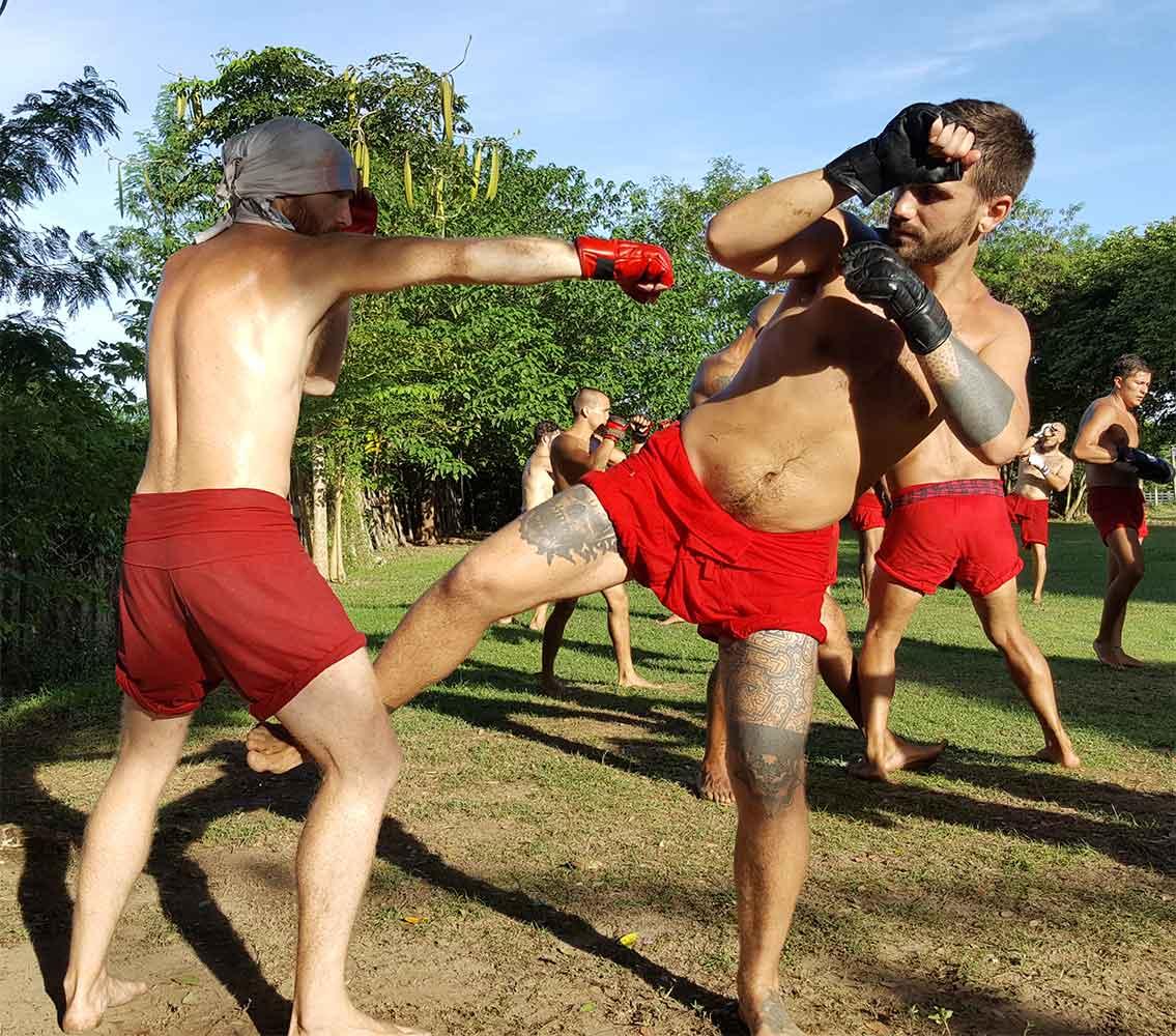 Striking in the fighting arts - muay thai sangha