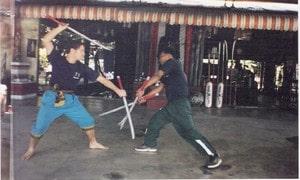 Buddhai Swan training